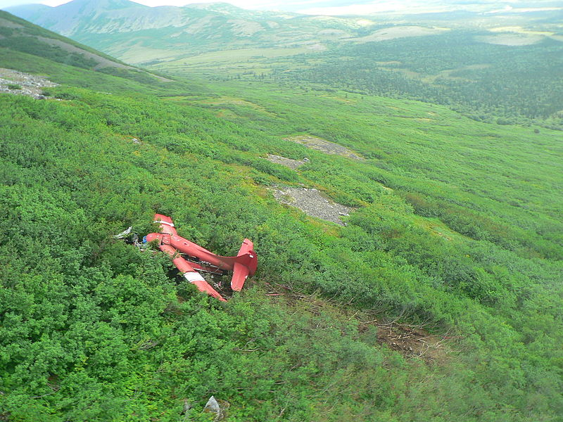 Stevens plane crash